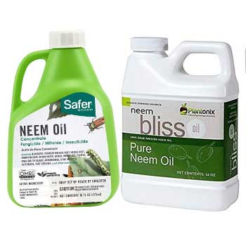 RECOMMENDED PRODUCTS FOR THE GARDEN
